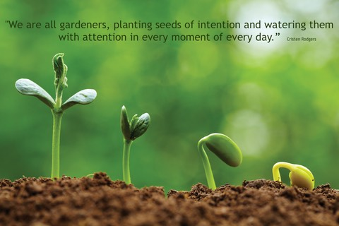 Intention quote seed image